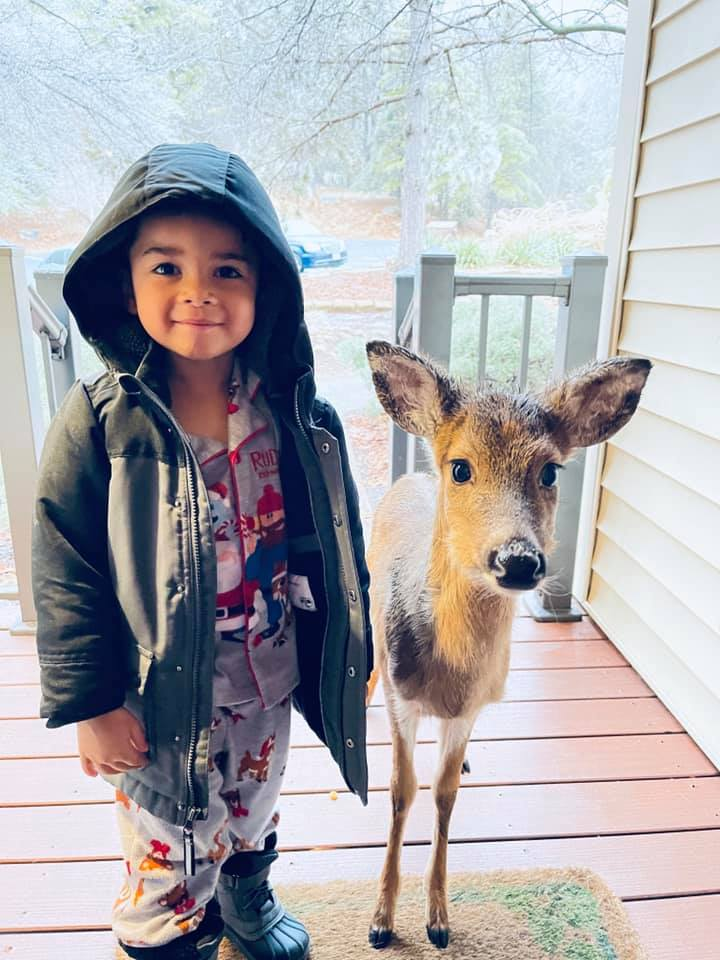 This 4-Year-Old Went Outside To Play, And Came Back With A New Friend